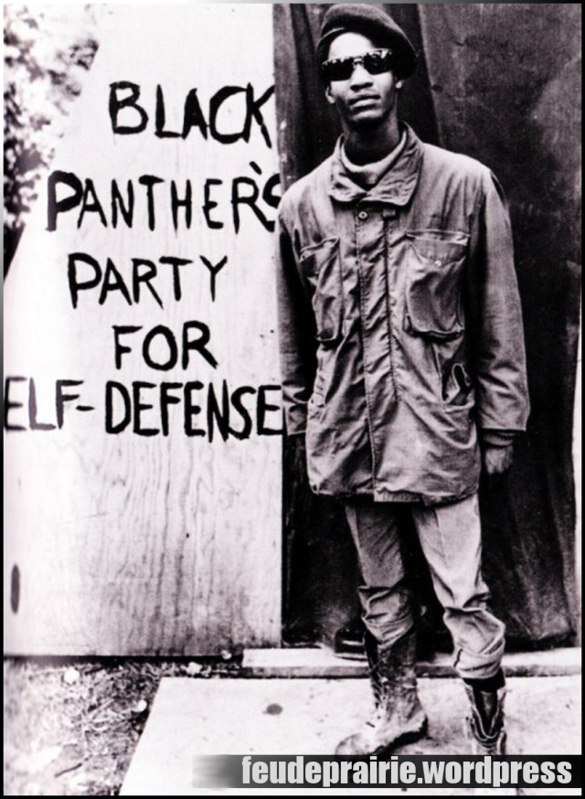 Black panthers greece